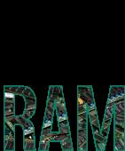 Принт Little RAM вариант 1