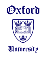 Принт Oxford вариант 1