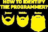 Принт The programmer вариант 1